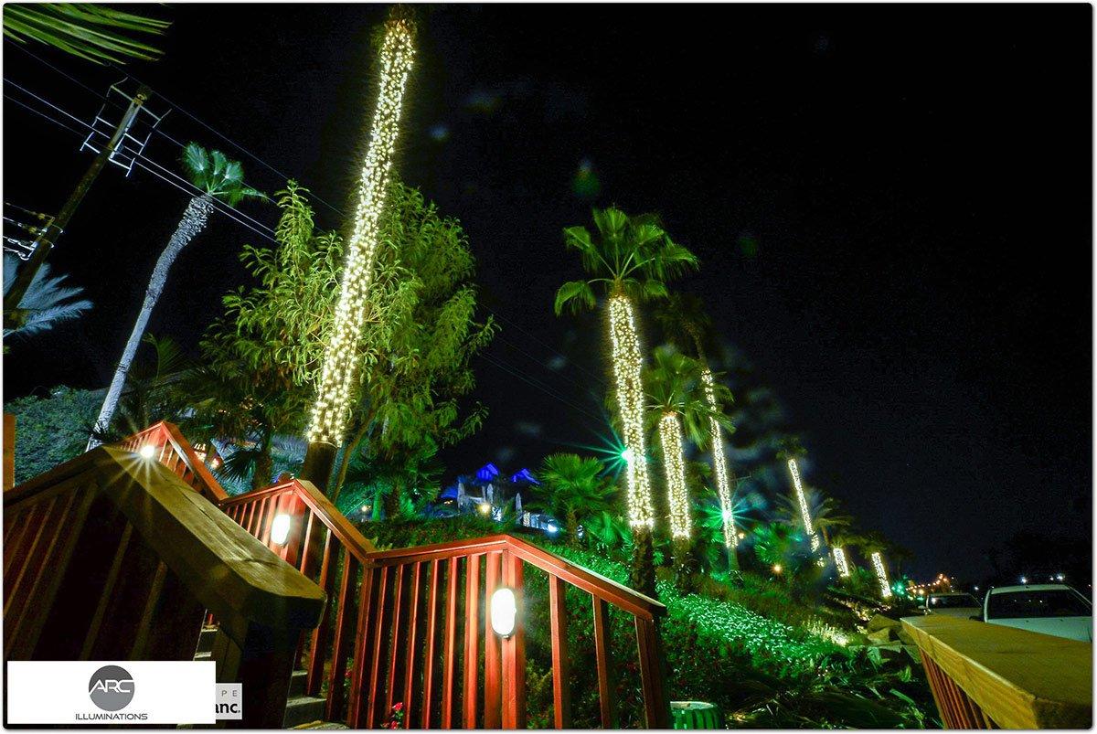 Plam tree lighting decorations