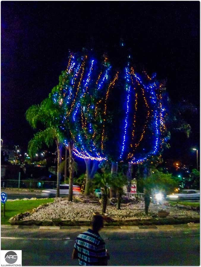 Lighting decorations for the city tree (1)