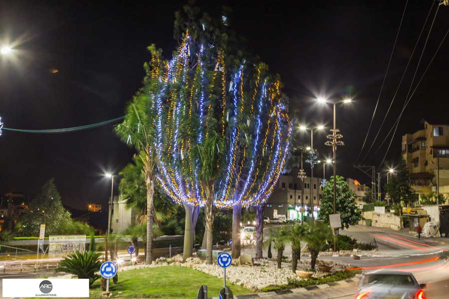 Lighting decorations for the city tree (2)