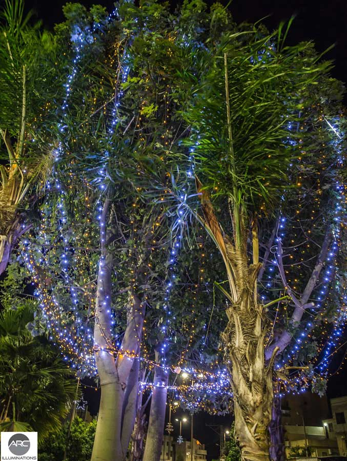 Lighting decorations for the city tree (3)