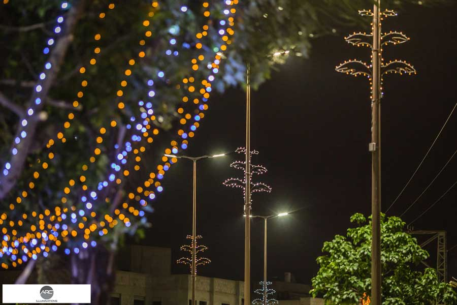 Lighting decorations for the city tree (4)