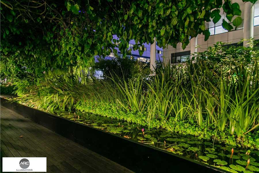 Special garden lighting (3)