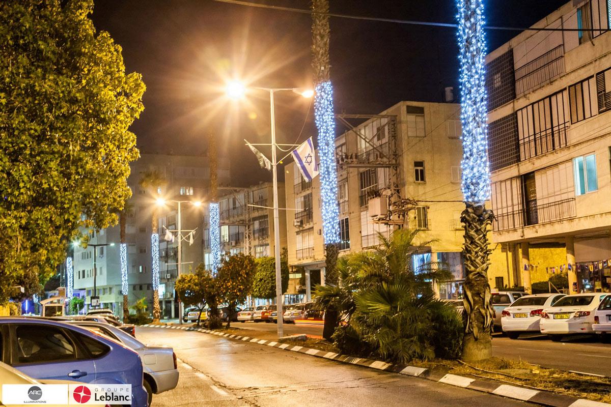 Street lighting decorations (2)